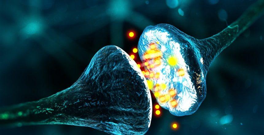 informacion-por-neurona-min