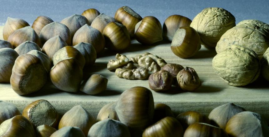 Semillas y nueces ricas en Zinc y Magnesio